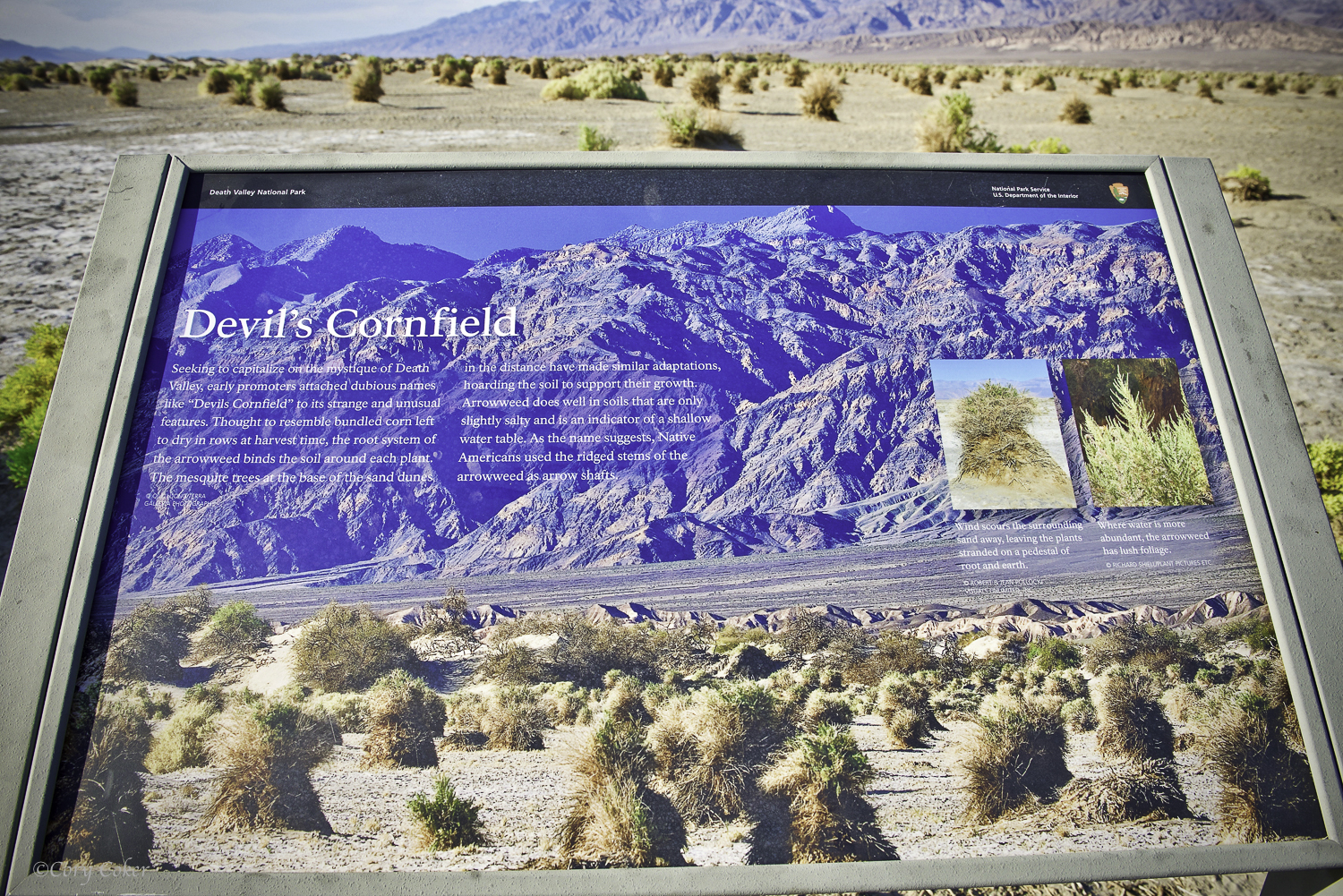 CC Death Valley National Park-7.jpg
