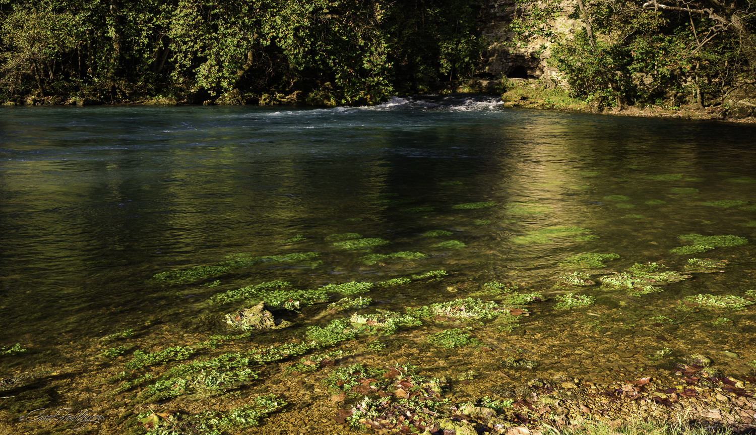 Watercress abounds in the mineral rich water.  It is hard to properly show just how clear this water is.