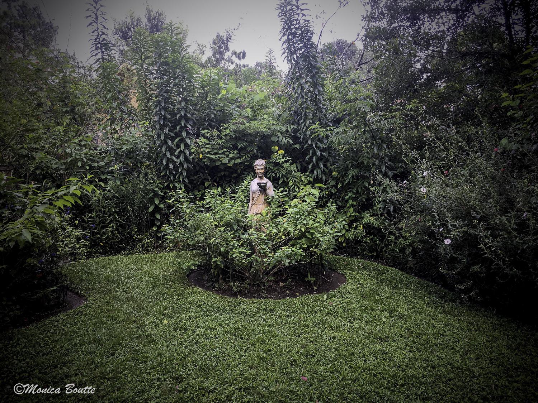 MB Humble Earth Garden-37.jpg