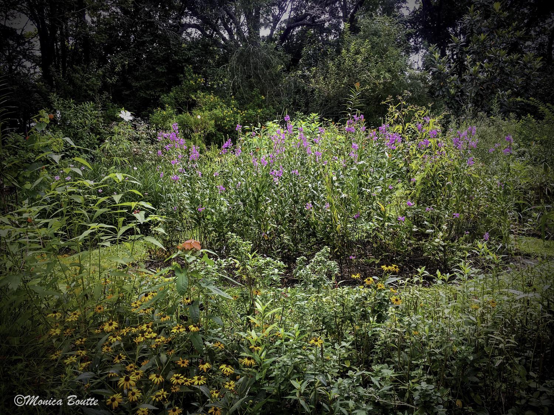 MB Humble Earth Garden-34.jpg
