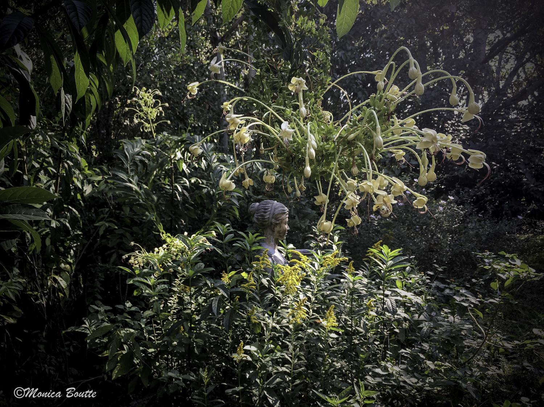 MB Humble Earth Garden-58.jpg