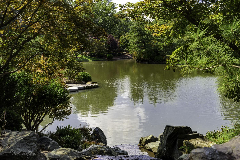 MO Botanical Gardens-32.jpg