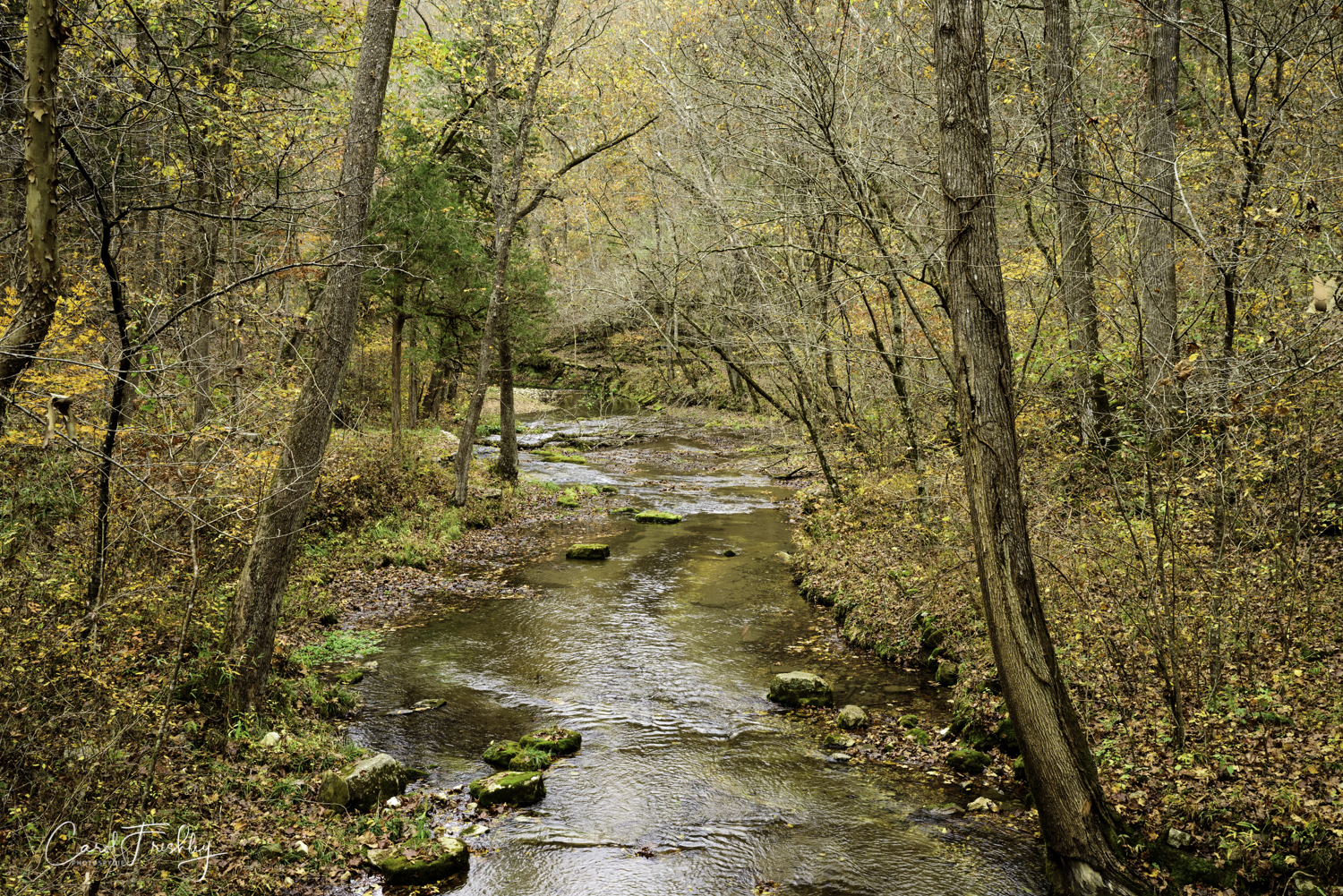Mill Creek was named after a grist mill located just below the dam that is pictured above.