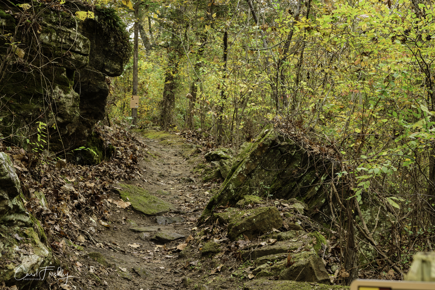 The volunteers told us it is an easy hike to the Ozark Folk Center. They were clearing the path.