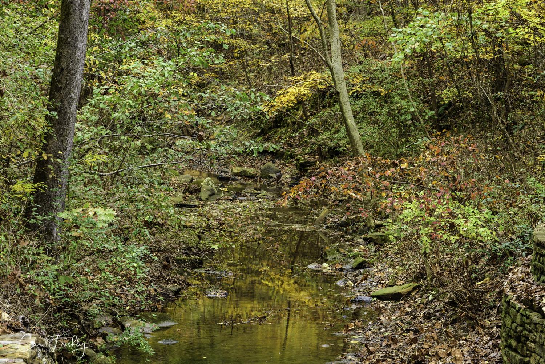 Downstream.