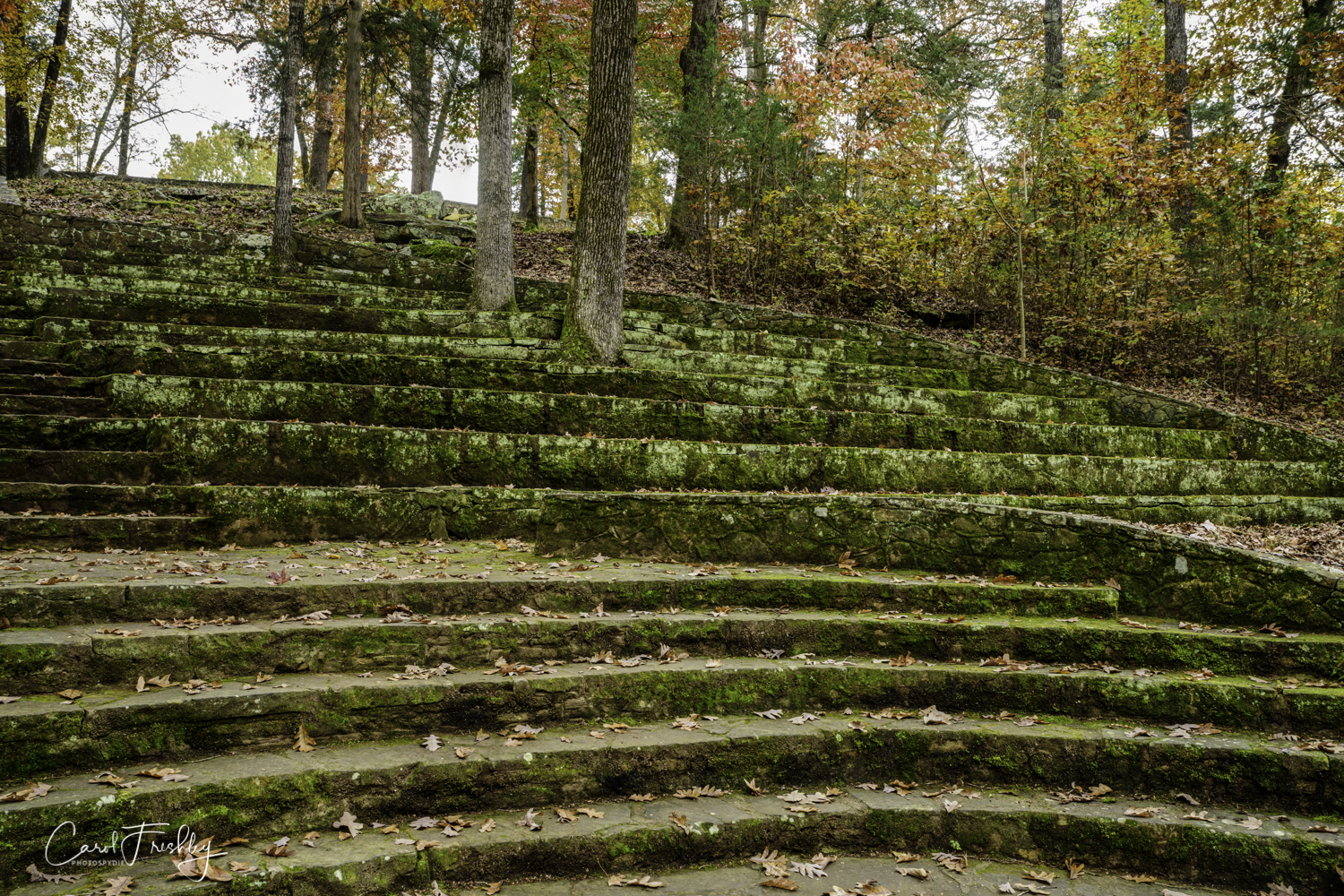 The amphitheater seats are made of stone, of course. The lovely mossy covering does not deter people from using them.