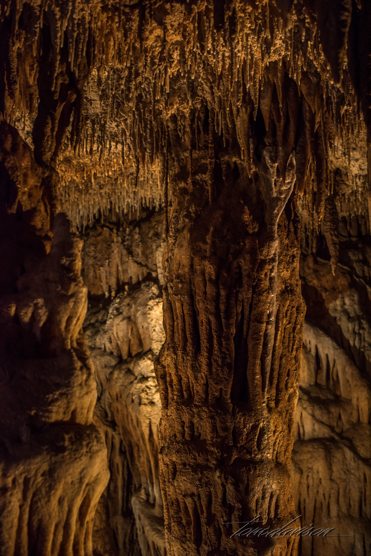 TD Cavern (324 of 45).jpg