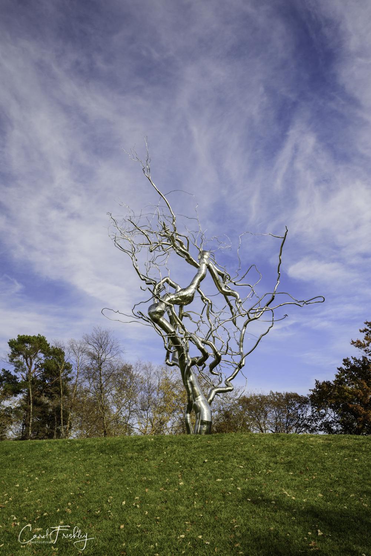 Neslon-Atkins Sculpture Garden-33.jpg