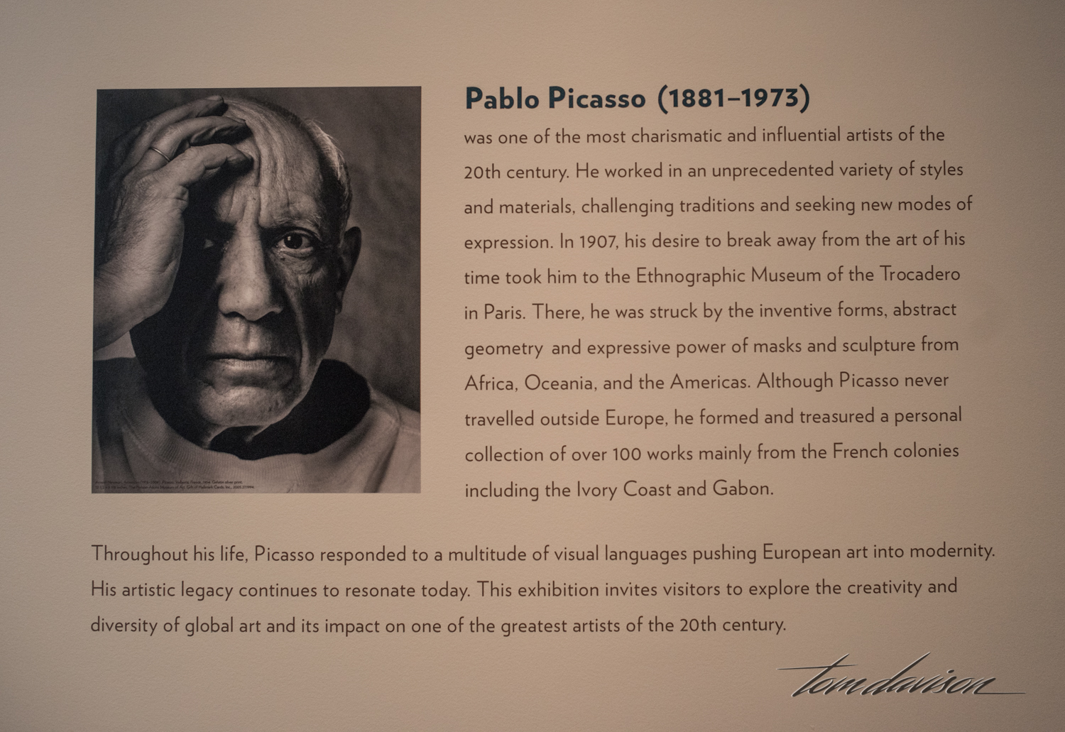 Picasso (300 of 53).jpg
