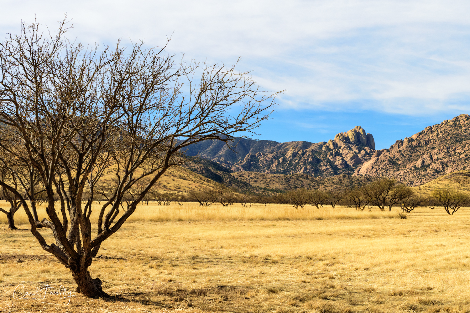 To Cochise Stronghold-5-5.jpg