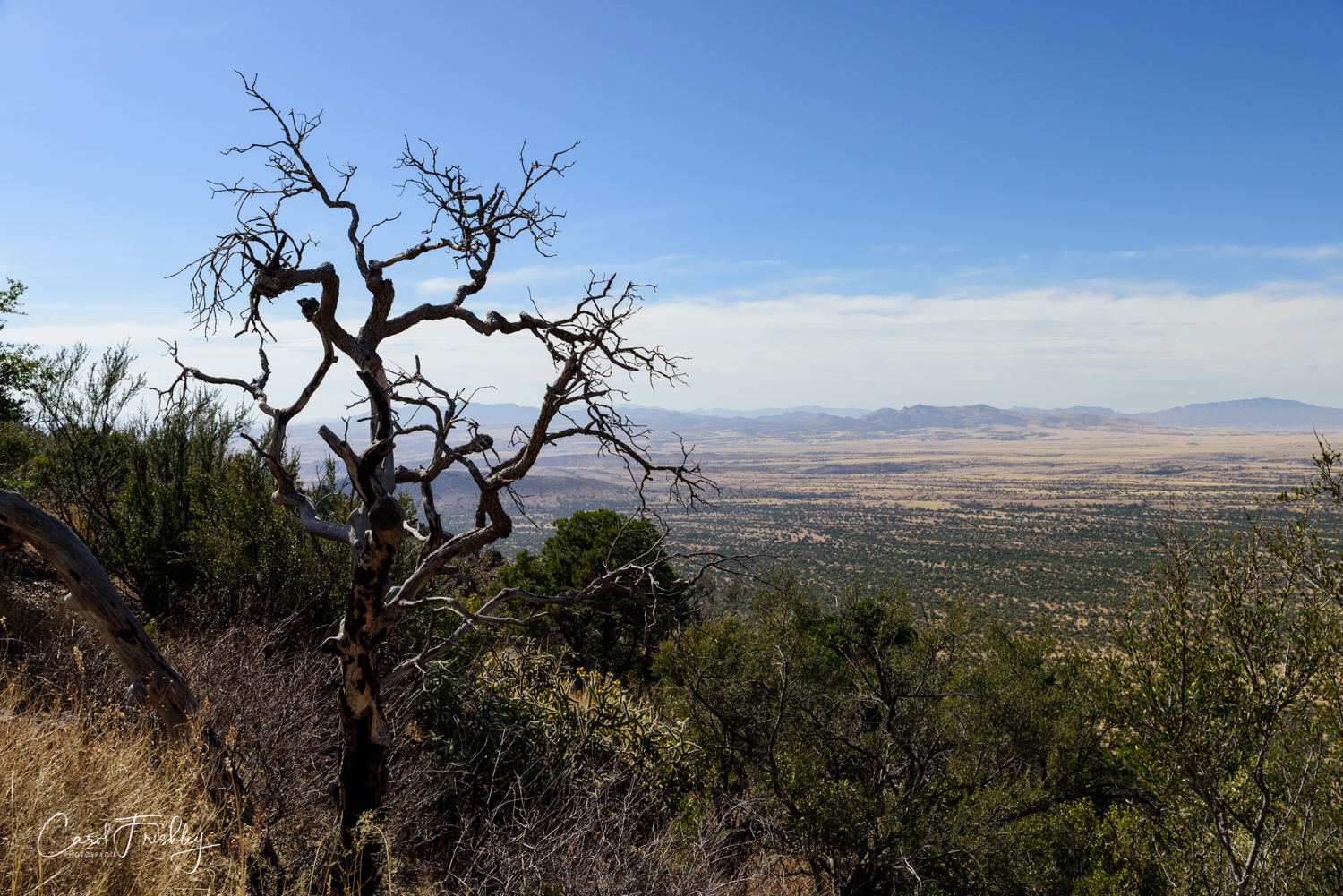 Looking back and down at the San Rafael Valley.