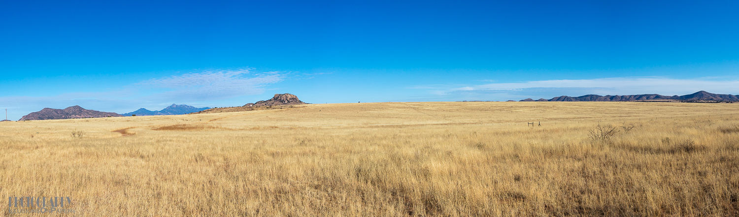 Grassland is amazingly tall. We saw no evidence of fire, an amazing thing when you recognize how dry it is.