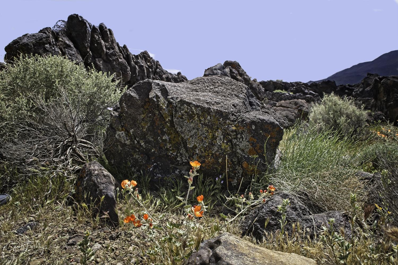 Fossil Falls 4.jpg