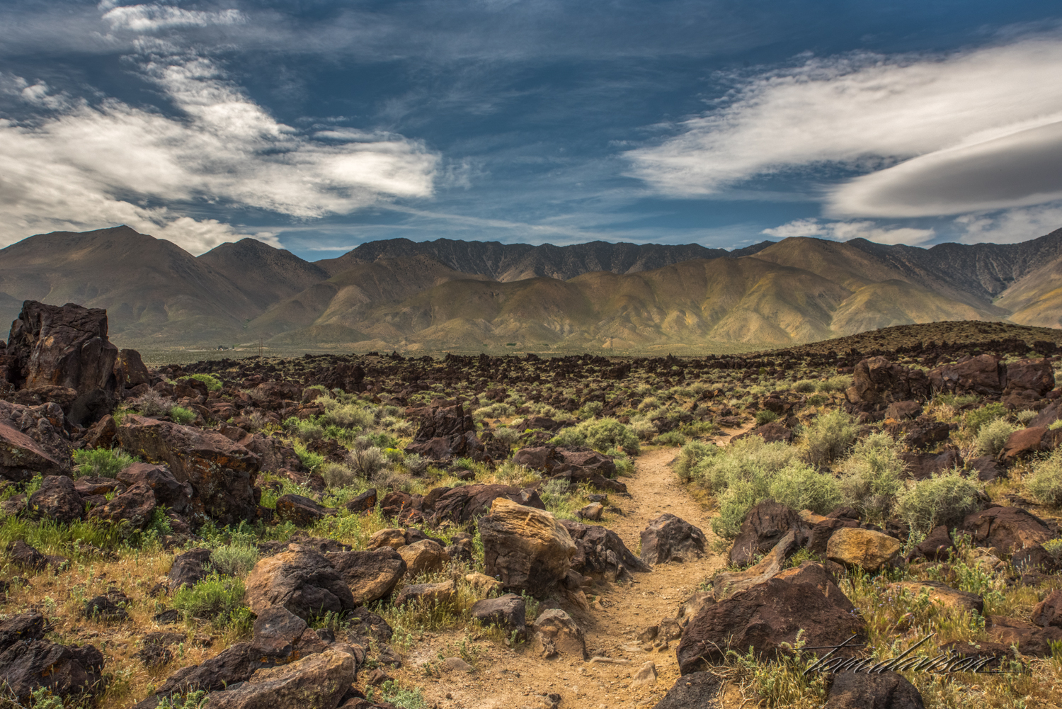 The path leading back to the dry Fossil Falls.