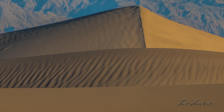 Dunes TD-6.jpg