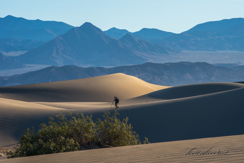 Dunes TD-12.jpg