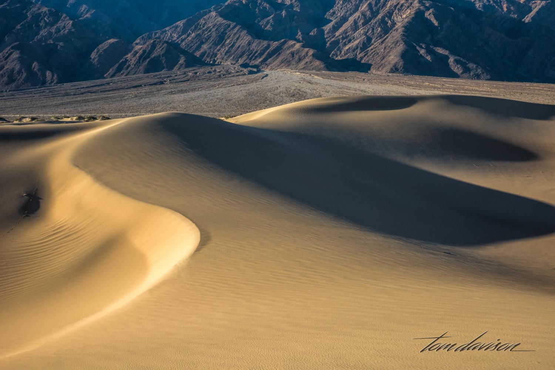 Dunes TD-15.jpg