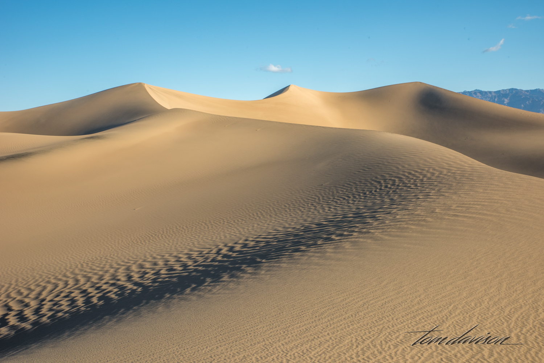 Dunes TD-19.jpg