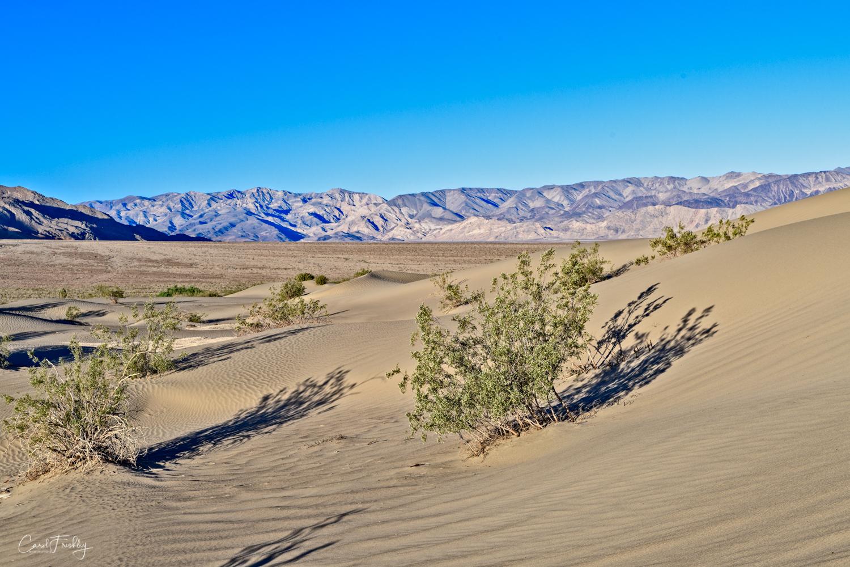 Mesquite Flat Sand Dunes-10.jpg