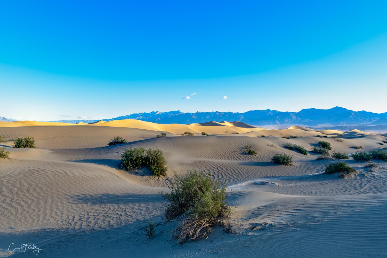 Mesquite Flat Sand Dunes-13.jpg