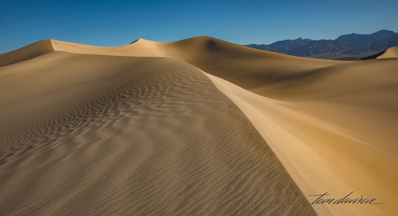 Dunes TD-22.jpg