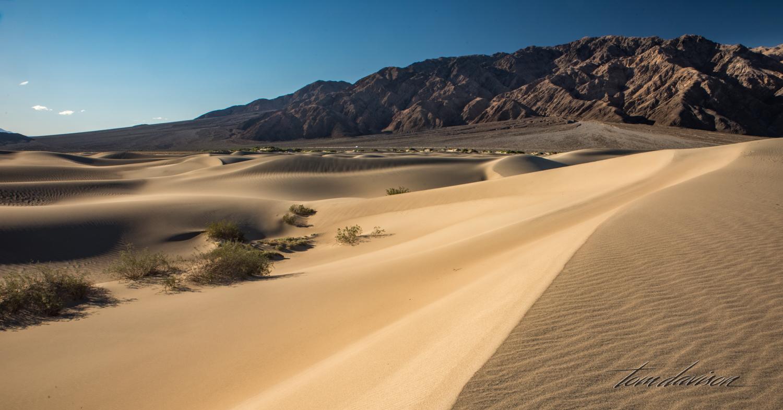 Dunes TD-23.jpg