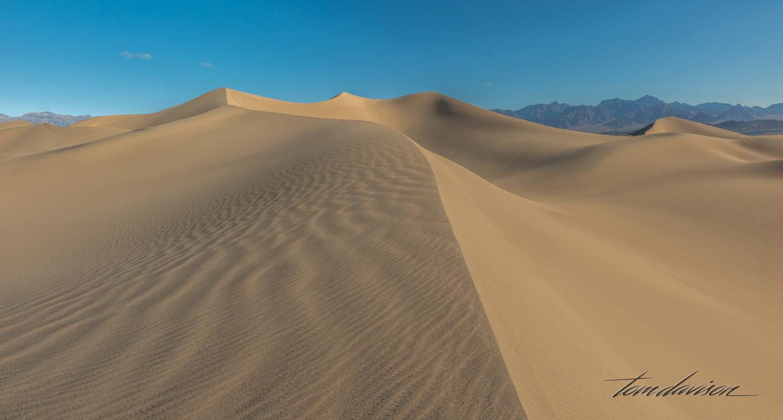 Dunes TD-24.jpg