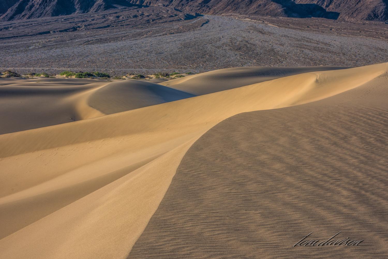 Dunes TD-29.jpg
