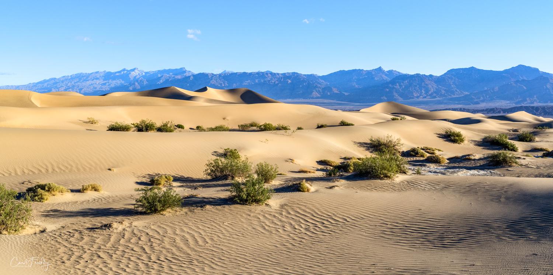 Mesquite Flat Sand Dunes-18.jpg
