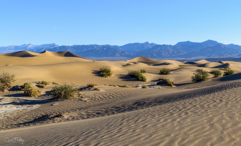 Mesquite Flat Sand Dunes-19.jpg
