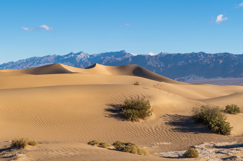 Mesquite Flat Sand Dunes-21.jpg