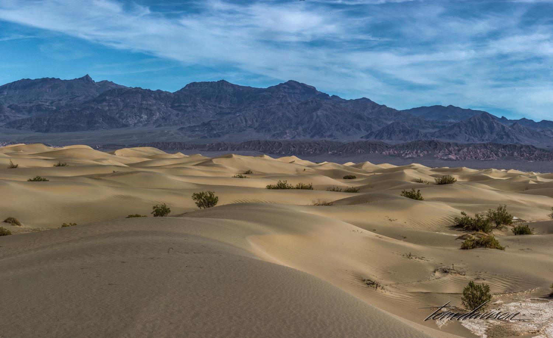 Dunes TD-39.jpg