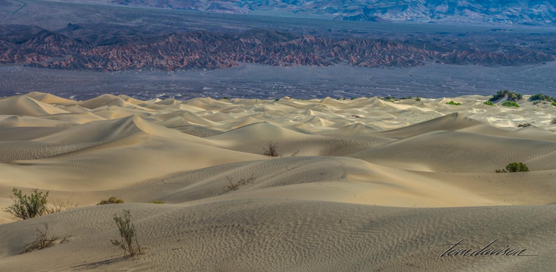 Dunes TD-40.jpg