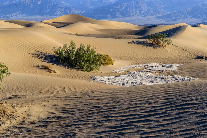 Mesquite Flat Sand Dunes-23.jpg