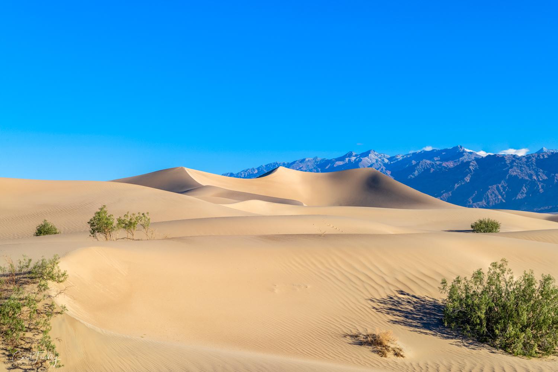Mesquite Flat Sand Dunes-25.jpg