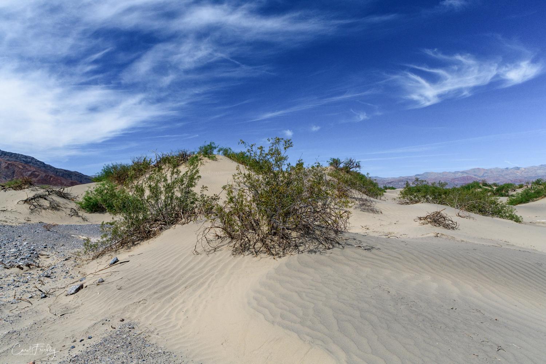 Mesquite Flat Sand Dunes-35.jpg