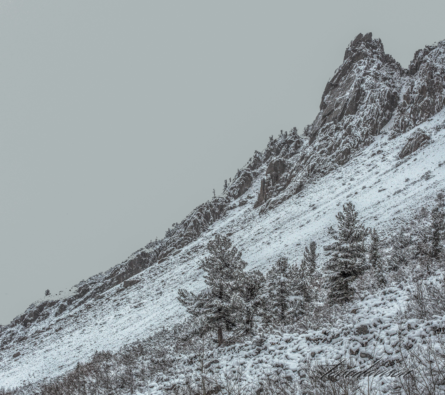 As we went up the mountain towards Lake Sabrina the snowfall was heavier. Fortunately the snow plows were keeping it clear and we just took the road slowly, willing to turn around any time it got uncomfortable.