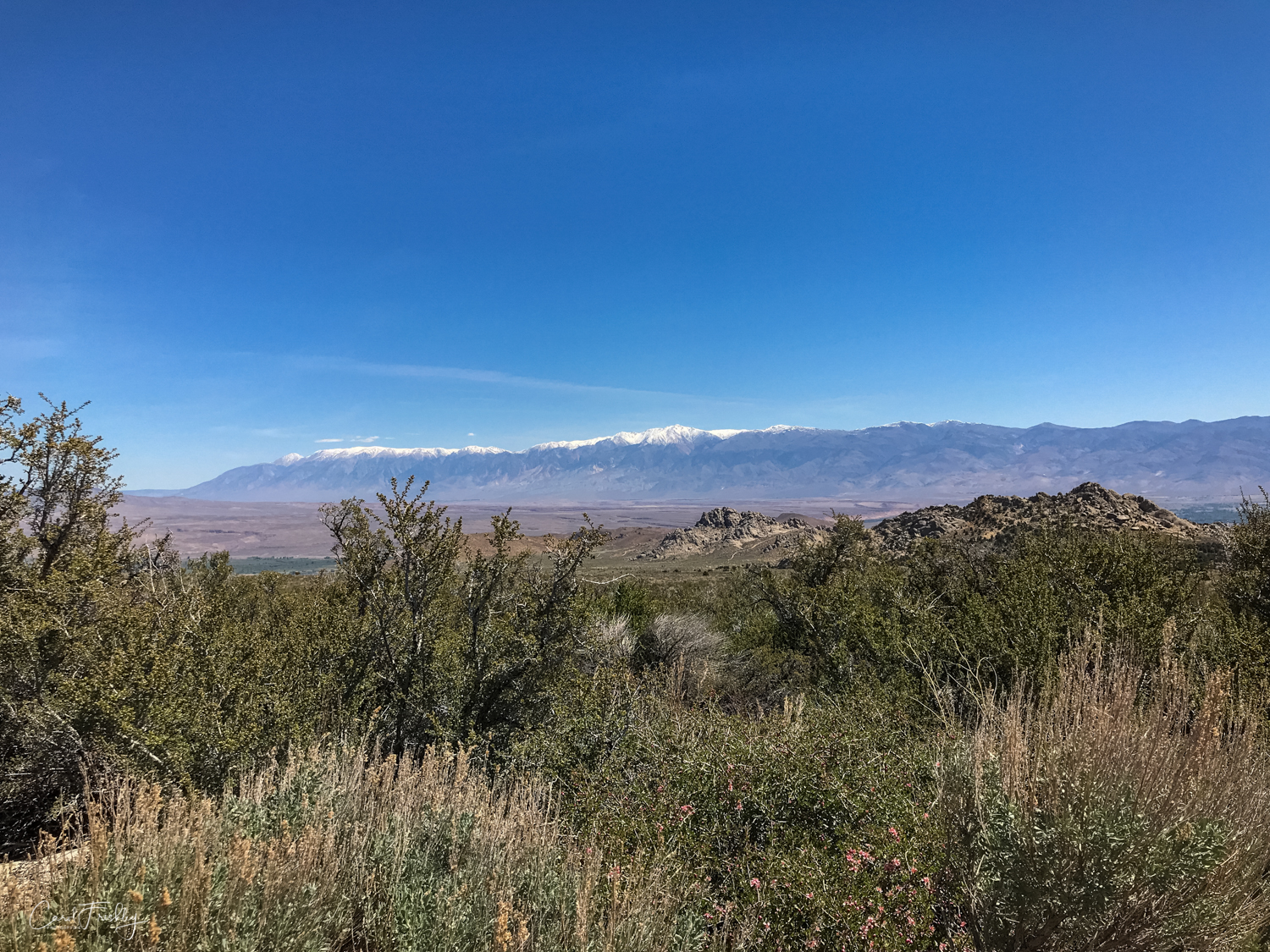 Buttermilk Canyon-21.jpg