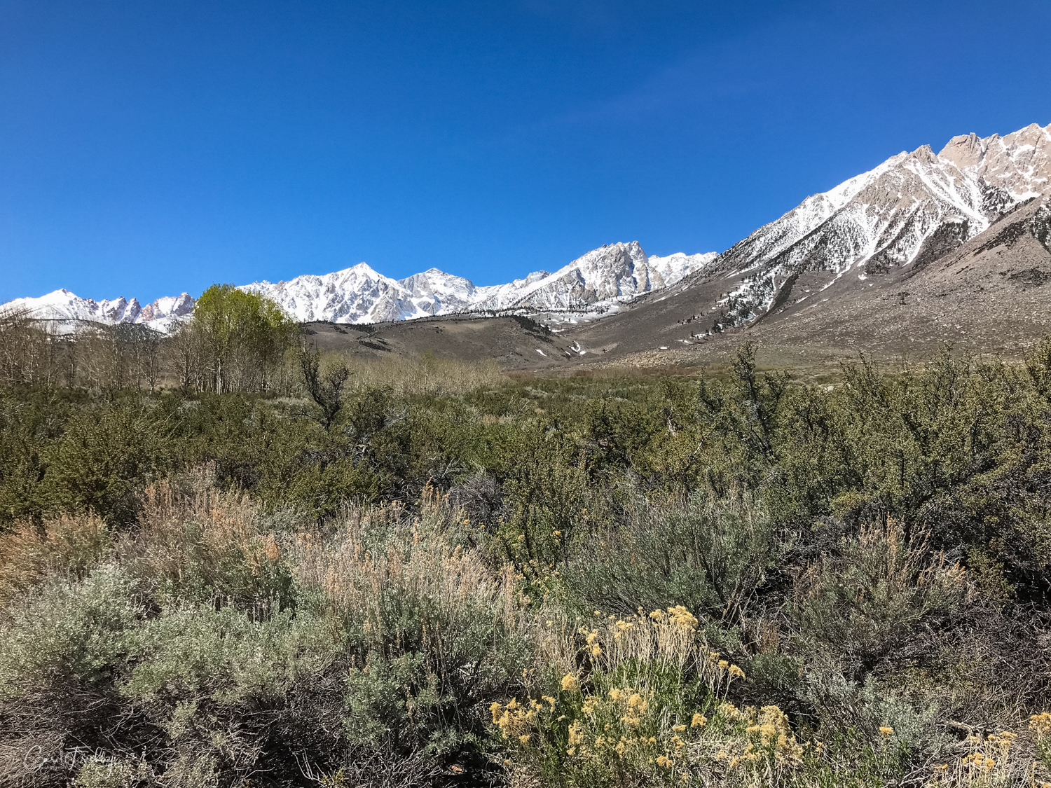 Buttermilk Canyon-20.jpg