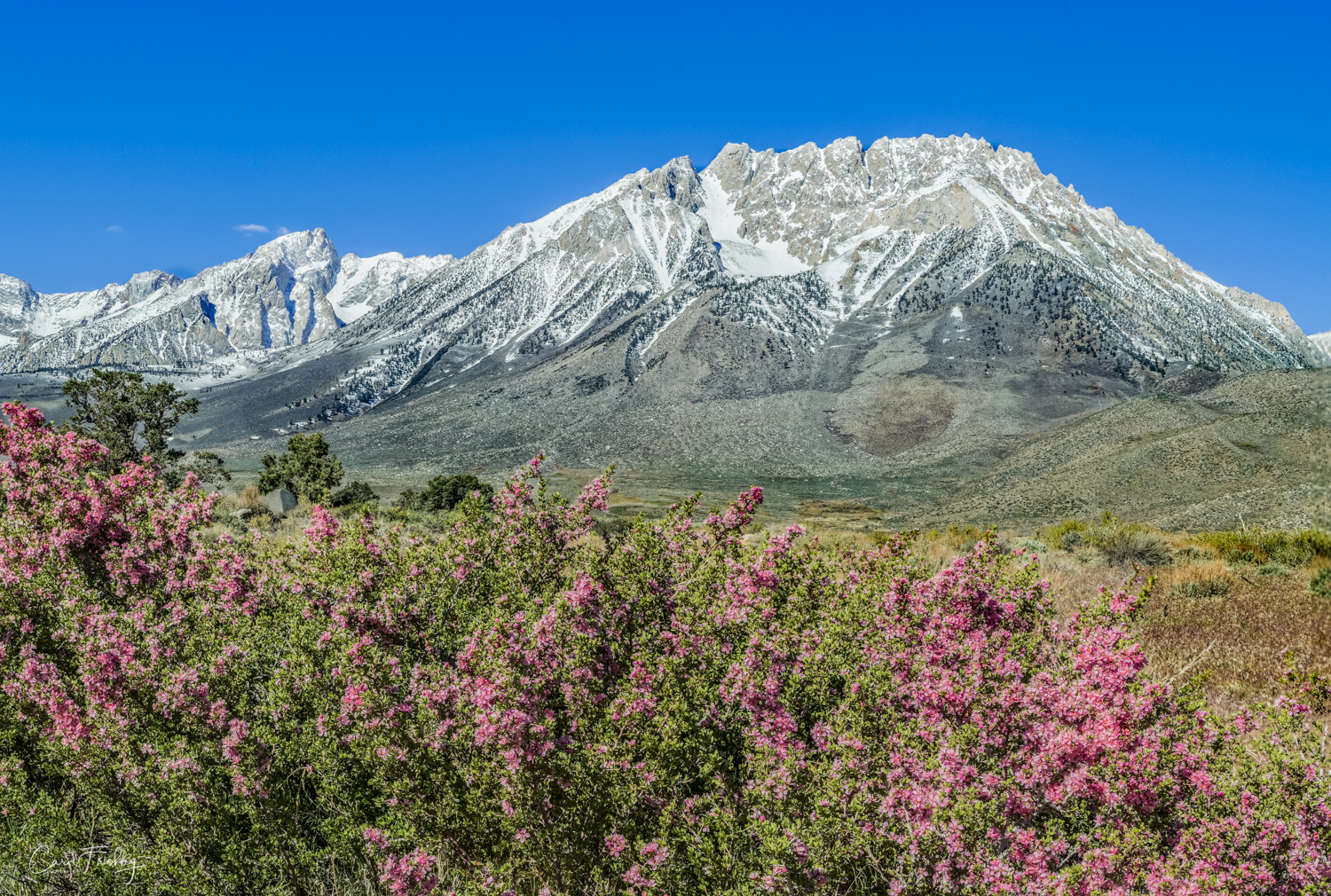 Buttermilk Canyon-15.jpg