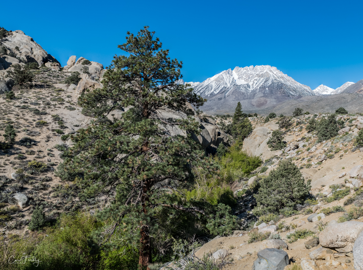 Buttermilk Canyon-13.jpg