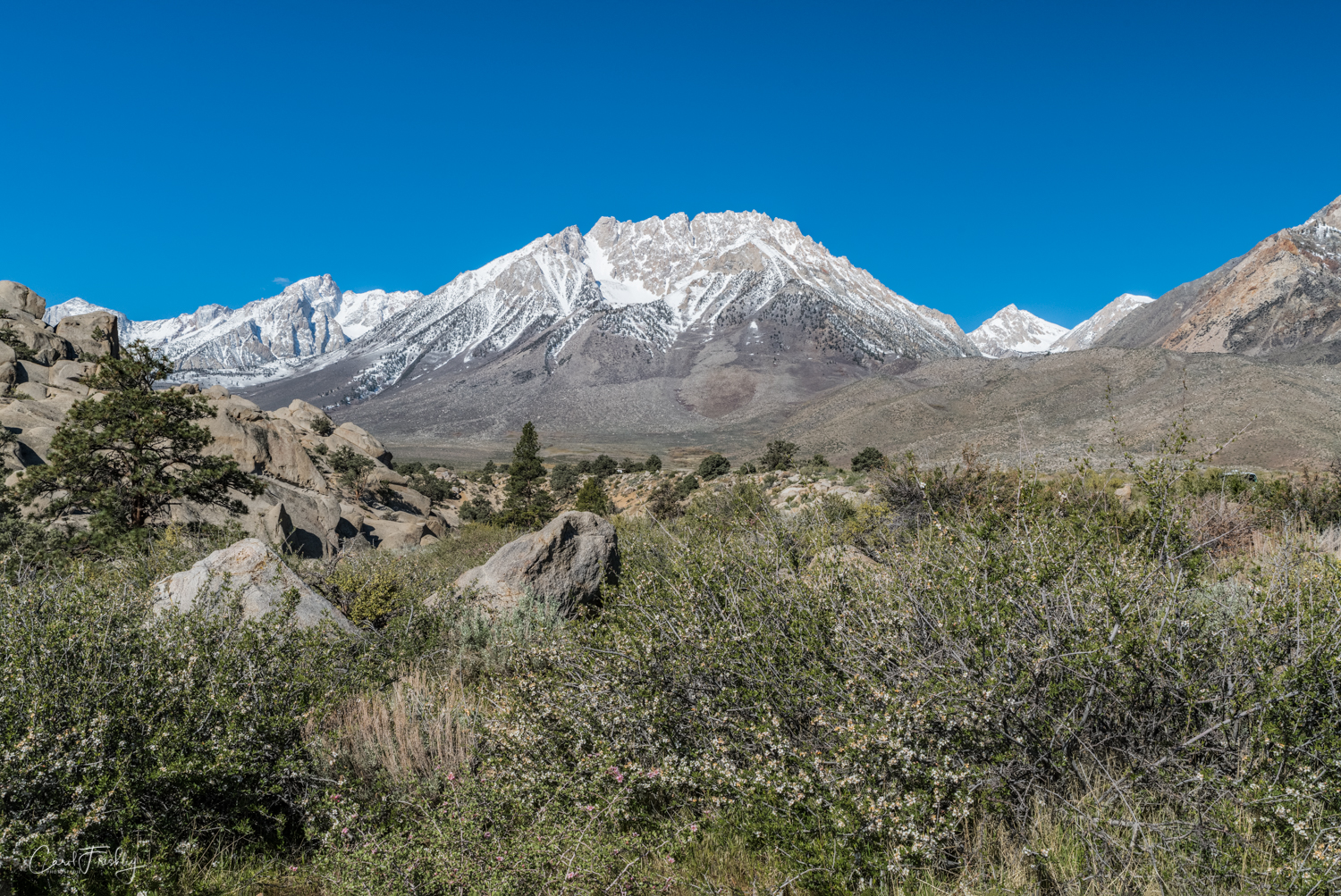 Buttermilk Canyon-12.jpg