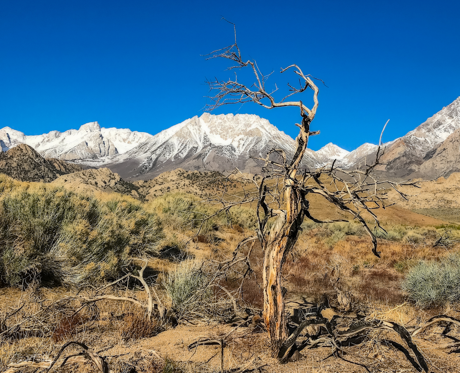 Buttermilk Canyon-7.jpg
