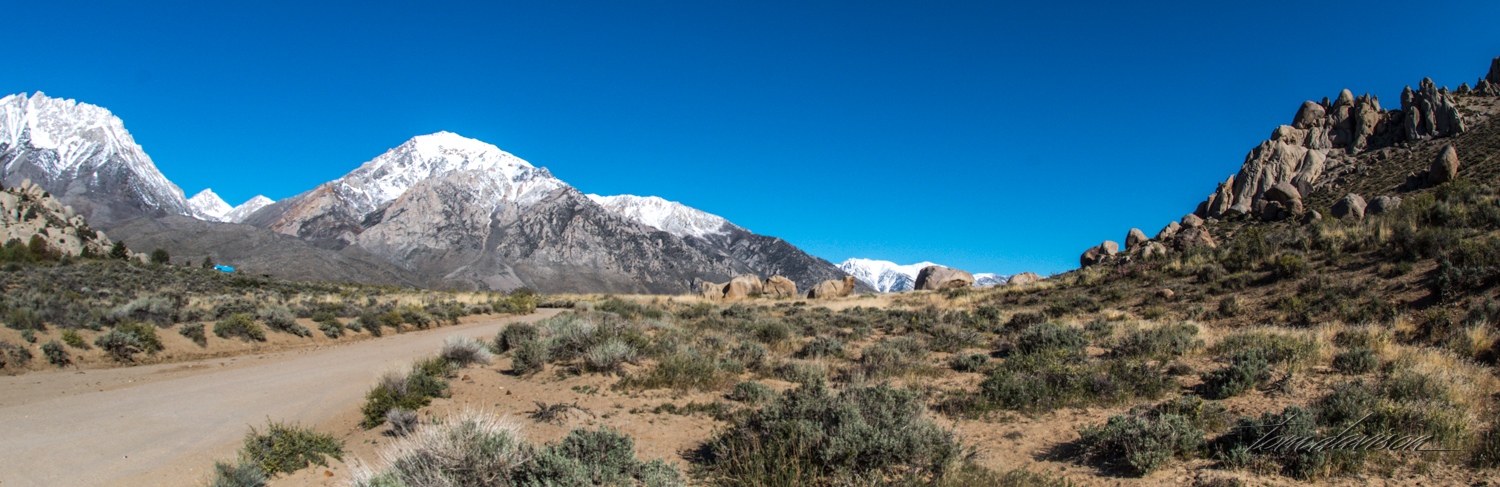 Buttermilk-3.jpg