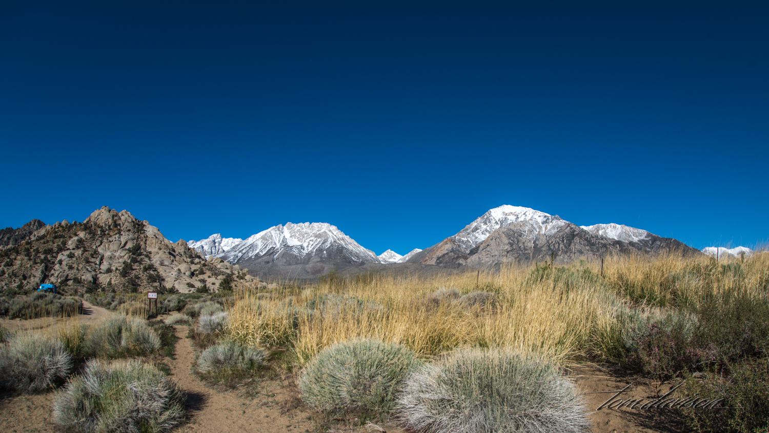 Buttermilk-4.jpg