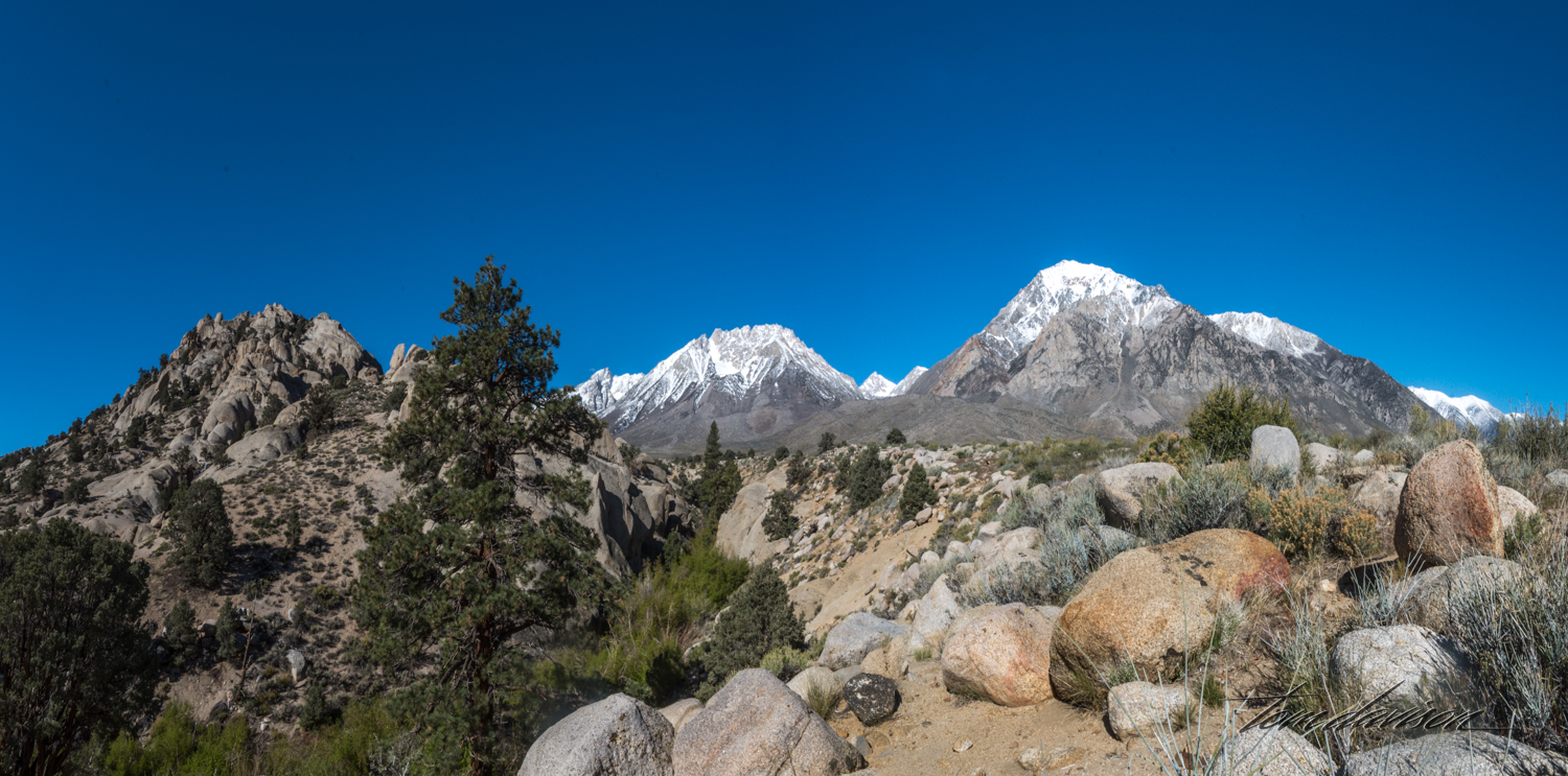 Buttermilk-7.jpg