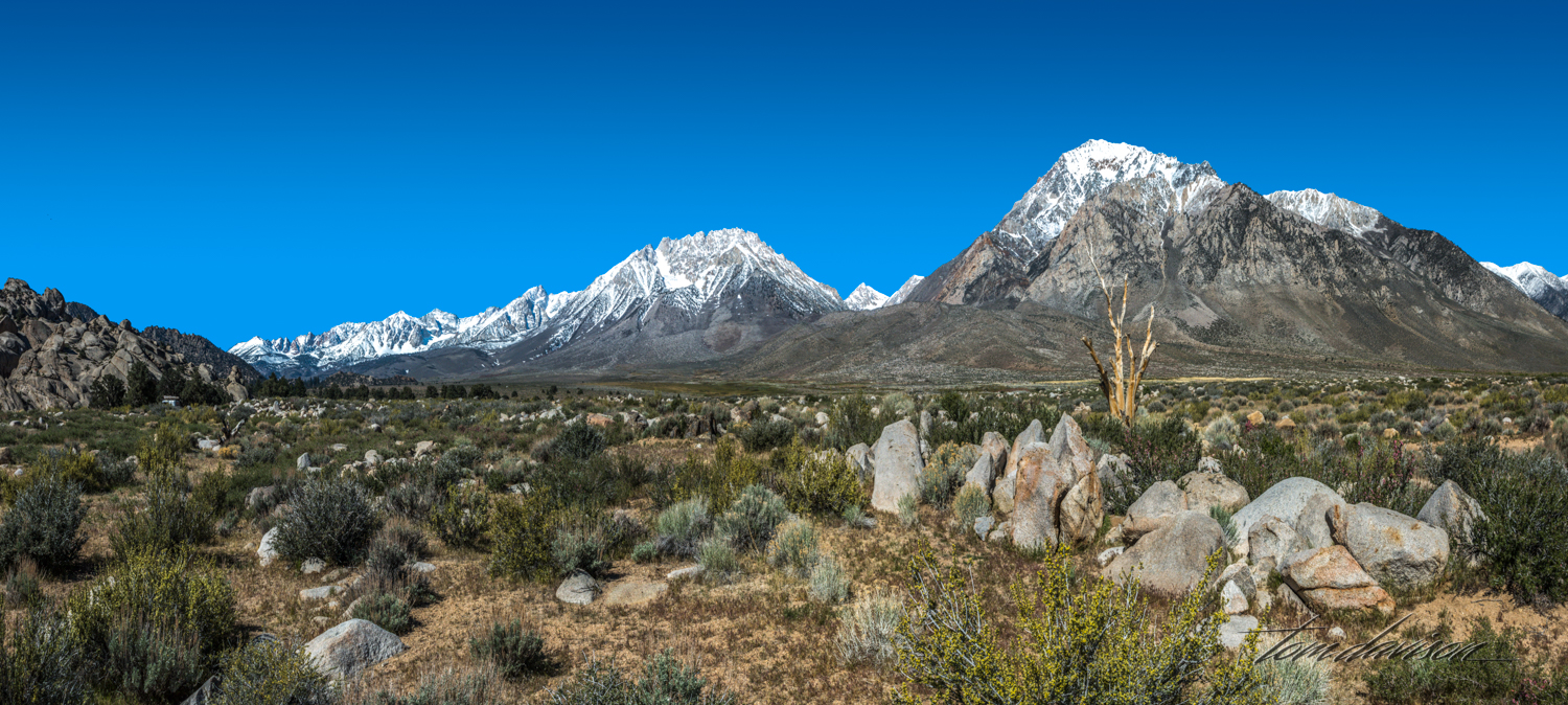 Buttermilk-12.jpg