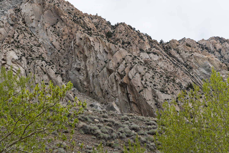 Pine Creek runs through a narrow canyon. The walls of rock were fascinating.