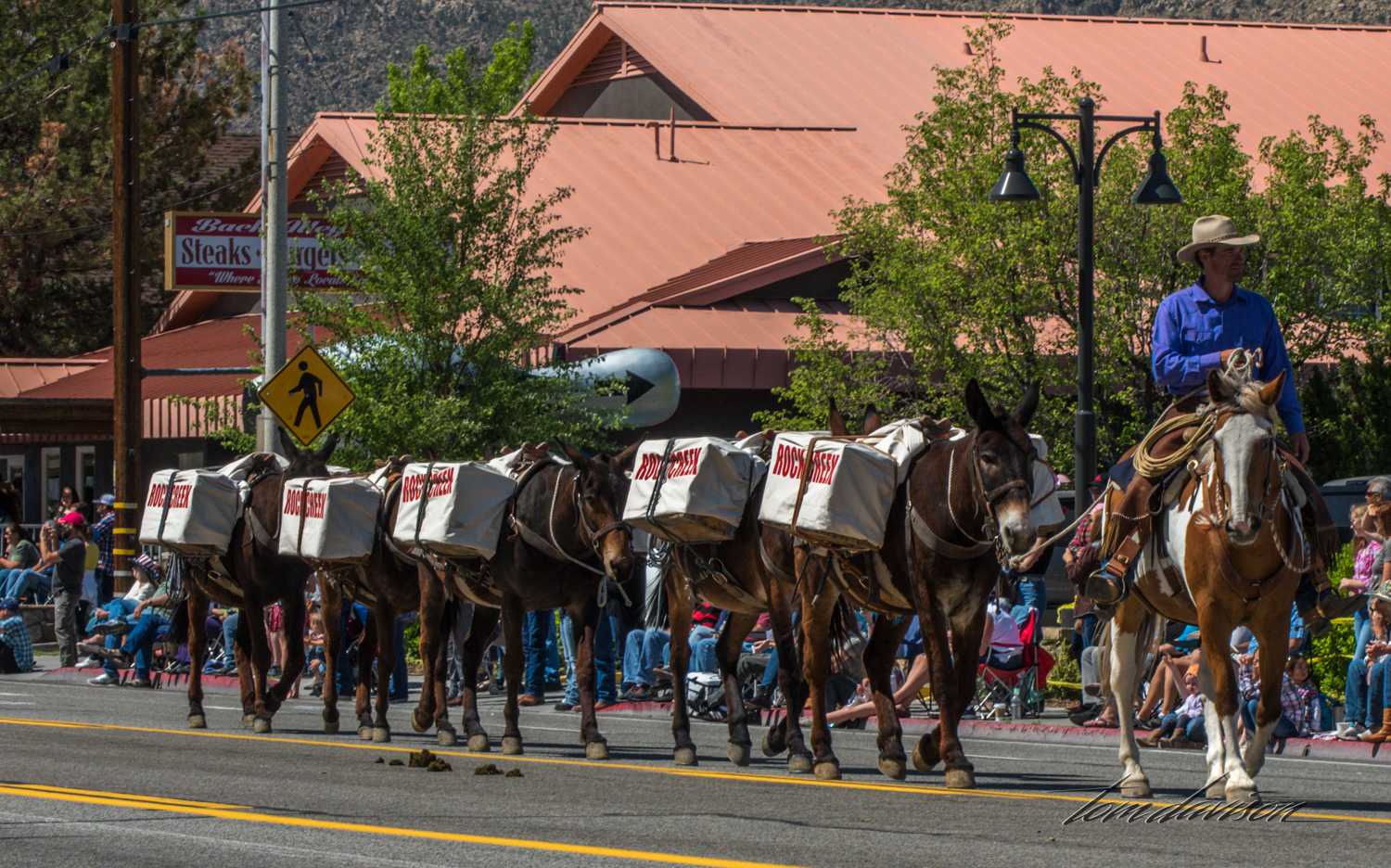 This was a common item in the parade as different packing companies advertised their services and gave us an idea of how the might look on the trail.