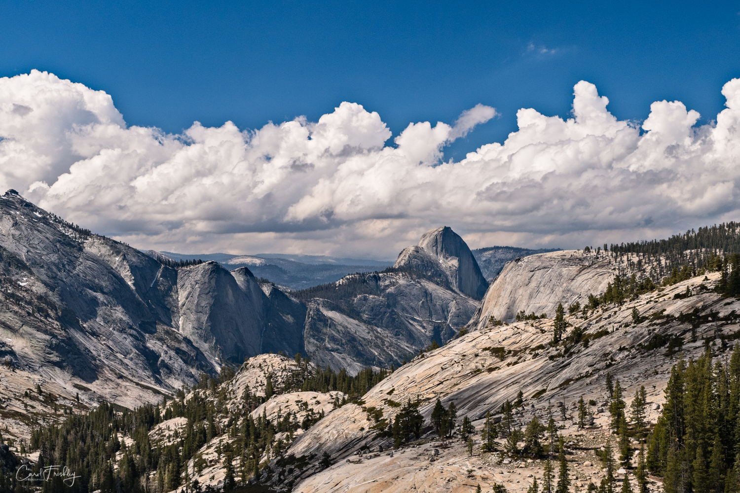 One the most important features of this area of the Sierras is the great amount of granite. You can see it in the very smooth, treeless, gray colored mountain faces. Trees do their best to make use of small pockets of soil.